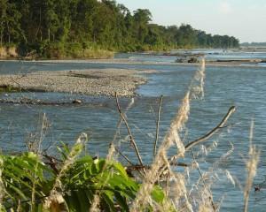 The Beautiful river of Jaldapara Wildlife Sanctuary