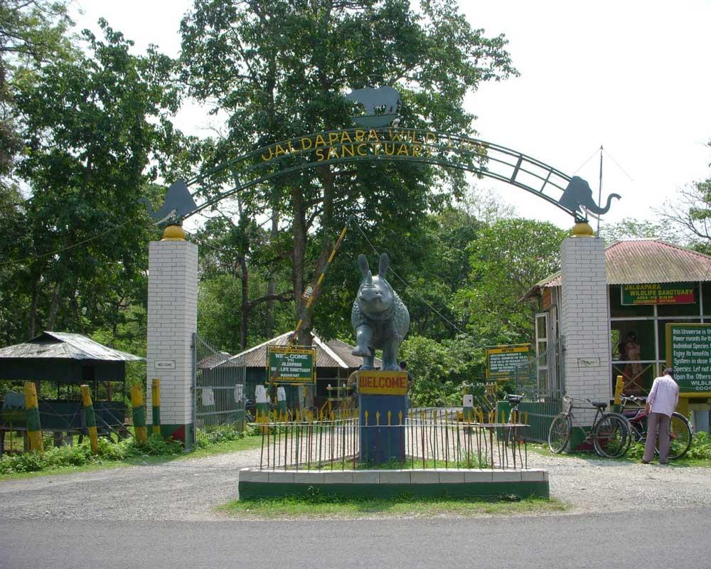 The Famous Jaldapara Wildlife Sanctuary