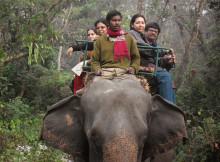 jaldapara-wildlife-elephant30